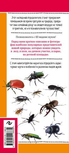 Обложка сзади Жуки. Мир удивительных насекомых Михаил Куценко