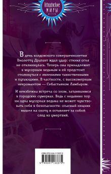 Обложка сзади Невозможная магия Анна Бруша