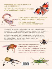 Обложка сзади Насекомые. Иллюстрированная энциклопедия начинающего энтомолога. 240 популярных видов, которые обитают рядом с нами Михаил Куценко