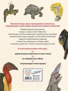 Обложка сзади Энциклопедия удивительных животных Сэми Бэйли