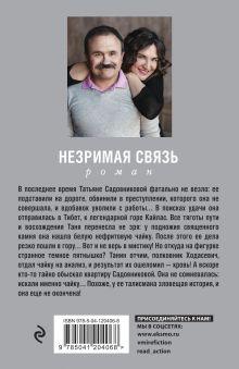 Обложка сзади Незримая связь Анна и Сергей Литвиновы
