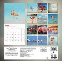 Обложка сзади Фламинго. Календарь настенный на 2022 год (300х300 мм)