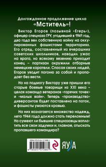 Обложка сзади Мститель. Лето надежд Валерий Шмаев